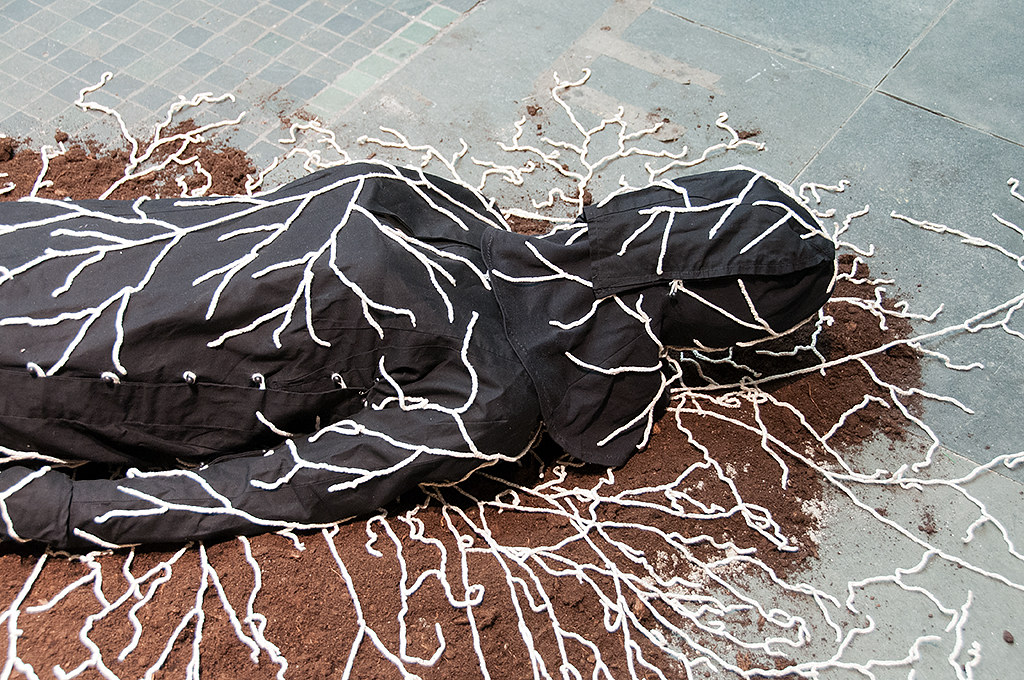 Jae Rhim Lee - Mushroom death ...