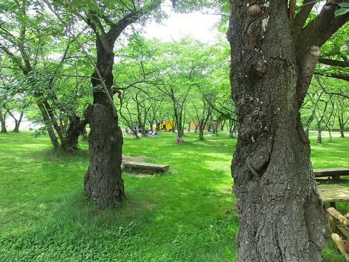長野県松本市アルプス公園-TOYBOX | by waoxwao
