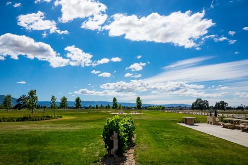california park ca sky nature clouds us afternoon unitedstates outdoor sanjose historical recreational santaclaracountyparks martialcottlepark martialcottlefamilyranch