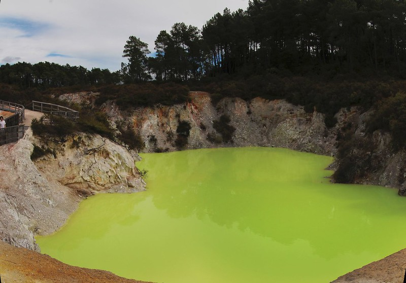 What an amazing lime green colour - The Devil's Bath at Wai-O-Tapu thermal area near Rotorua
