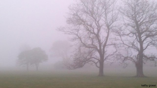 A Fog in Harkness