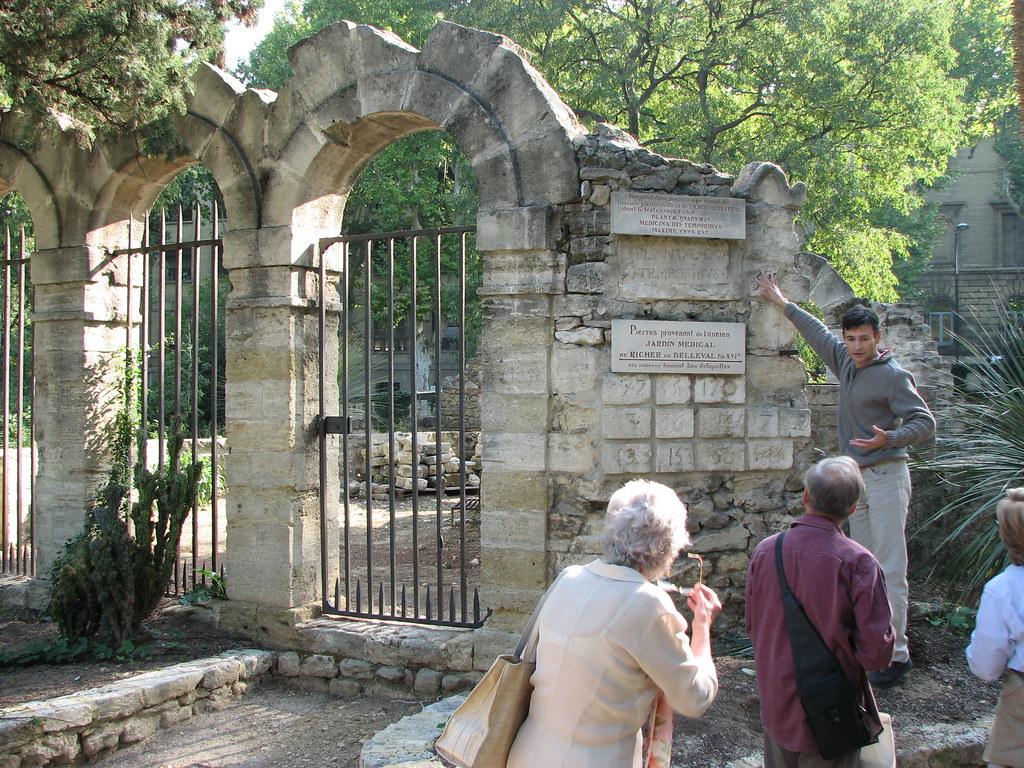 Le jardin des plantes de montpellier france the mgs - Le jardin des plantes montpellier ...