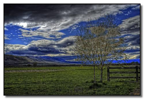 washington yakimavalley toppenishridge justlivingfarm