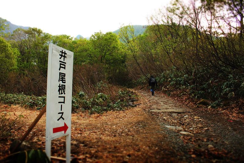 20120520_巻機山_0021