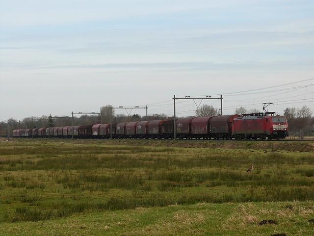 DB Cargo 189 081-3, Leyduin