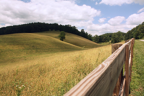 rural fence virginia farm leecounty