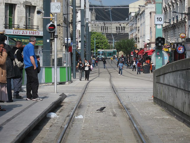 Cars on the tram tracks 1
