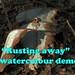 Rusting away