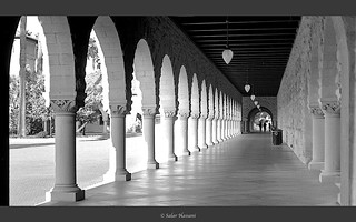 Stanford | by salar hassani