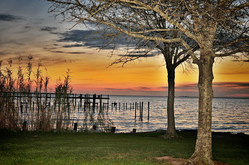 sunset tree beach water landscape pier nikon wave vr greengrass gulfcoast sb800 goldencolor mygearandme