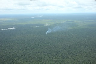 Illegal burning in conservation area | by glennhurowitz