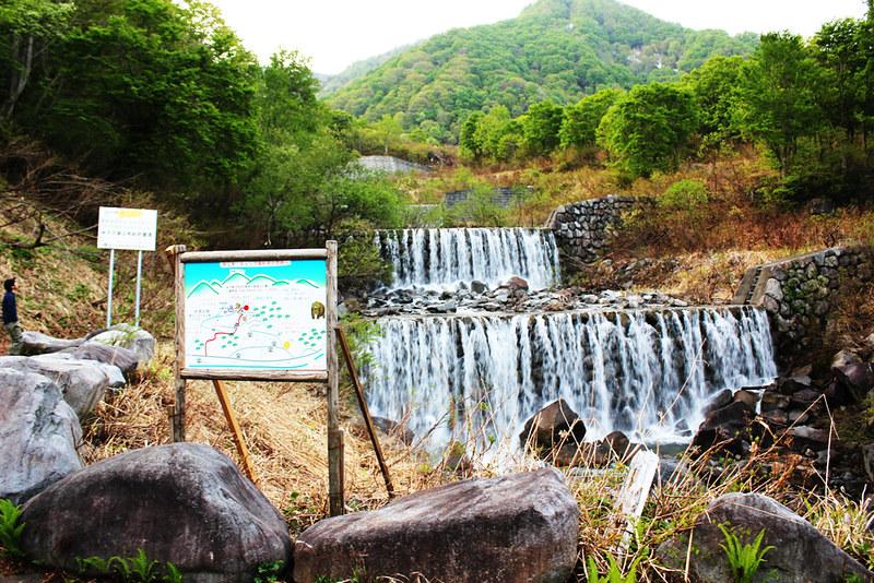 20120520_巻機山_0014