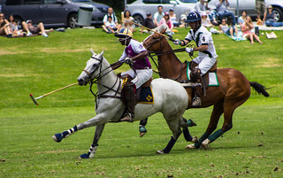 Will Rogers Polo Field