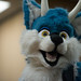 Biggest Little Fur Con 2014 - Day 2