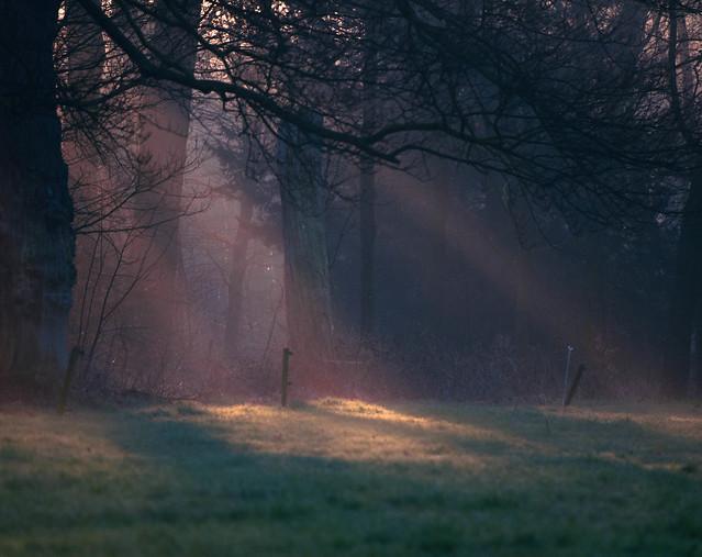 Wamberg met opkomende zon