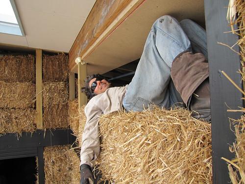Brett on Window Lintel - Strawbale House Build in Redmond Western Australia