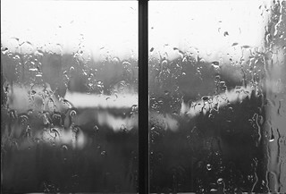 Wet and Miserable   by DaveFrost