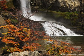My_1st_impressions_Autumn_waterfall | by My 1st impressions