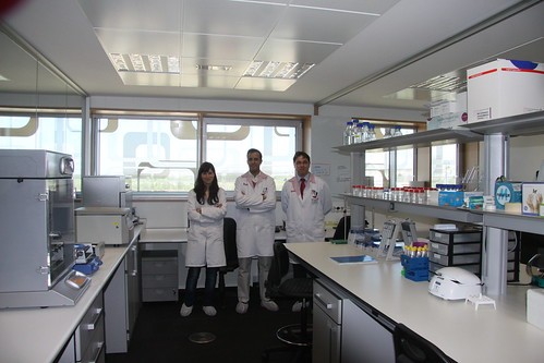 Sara Puertas, Gonçalo Doria and Christian Sánchez, members of our Technical Department, in the laboratory in Zaragoza | by NANOIMMUNOTECH S.L.
