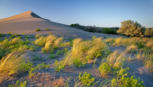 Golden Hour Bruneau Sand Dunes | by Knowles Gallery