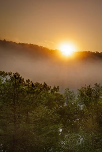 morning mist fog sunrise nc asheville northcarolina blueridgeparkway frenchbroadriver