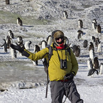 Lance and penguins