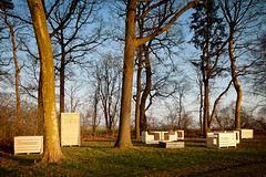"""At the tree tents of Dré Wapenaar in Tranendreef you can now also find Field Furniture """"Pure Nature"""" by Ardie Van Bommel (NL). She brings a sit, wash, toilet and barbecue unit based on the palettes or fruit chests which are often found in the Haspengouw landscape. For Ardie Van Bommel it's important that visitors of Tranendreef meet each other around her artworks.  Practical info  On display: March 21st –September 30th, 2012  Location: lane headed to the Castle of Hex (side street of Alfonsstraat), Bommershoven (Borgloon)  Access: limited parking facilities – beware of getting your car stuck due to wet surfaces  This art work is located in an agricultural area. Please respect the activities of the agricultural workers.  www.z33.be/en/z-out/pit/ardie-van-bommel-field-furniture-...  part of pit - art in the public space of Borgloon-Heers 