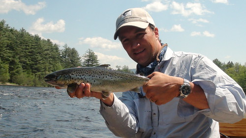 Nice WB salmon | by Maine River Guides