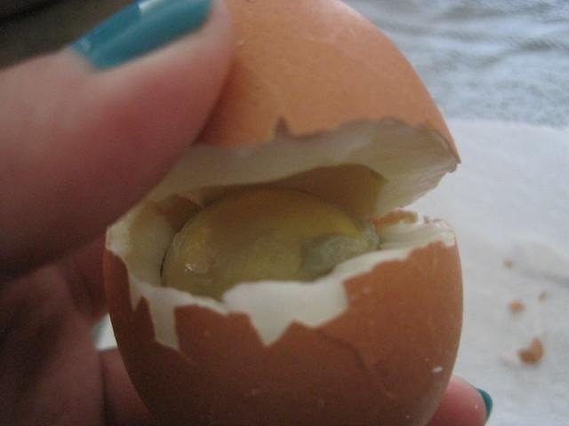 Weird Egg