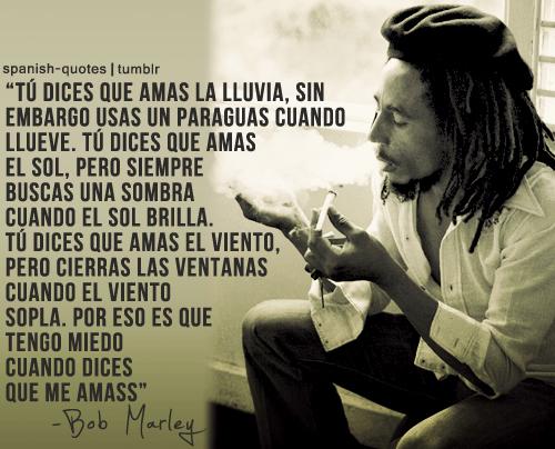 Frases De Bob Marley Tu Dices Que Amas La Lluvia Sin Emb