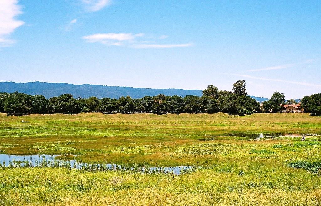 Lake Lagunita, Stanford University | This is an artificial l