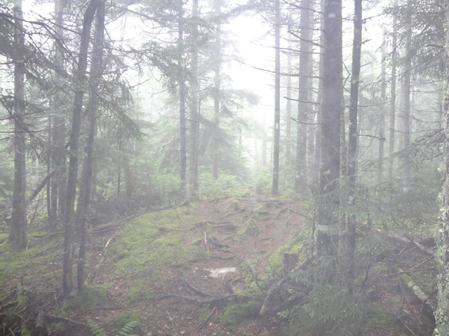 Fog on Mt. Cube