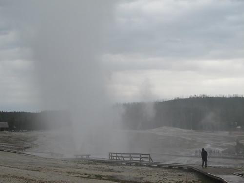 Yellowstone: Matt is on the scene | by mormolyke