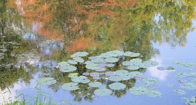 Nomahegan Pond