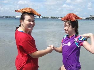 More starfish heads