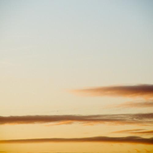 20120401 1851--DSLR-A850 250 mm 02596 | by J e n s