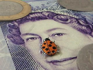 This ftt ladybird wants change.