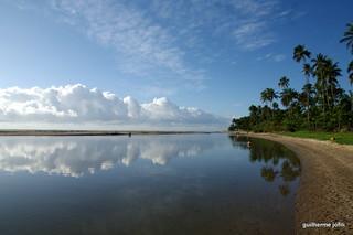 Placid Bay