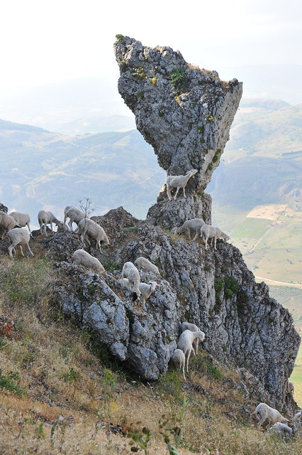 041 Caltabellotta (Sicily)