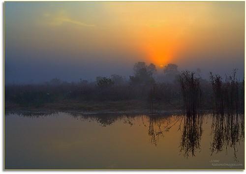 landscapes sunrises hdr professionalphotographer wma oldflorida floridaimages photoworkshops phototours wildlifemanagementareas phototourguide jmwnaturesimagescom dynamichdr5 audiovisualphotopresentations