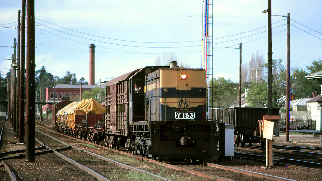 VR_BOX033S21 - Y153 at Castlemaine by michaelgreenhill