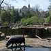 V jihlavské zoo, foto: Petr Nejedlý