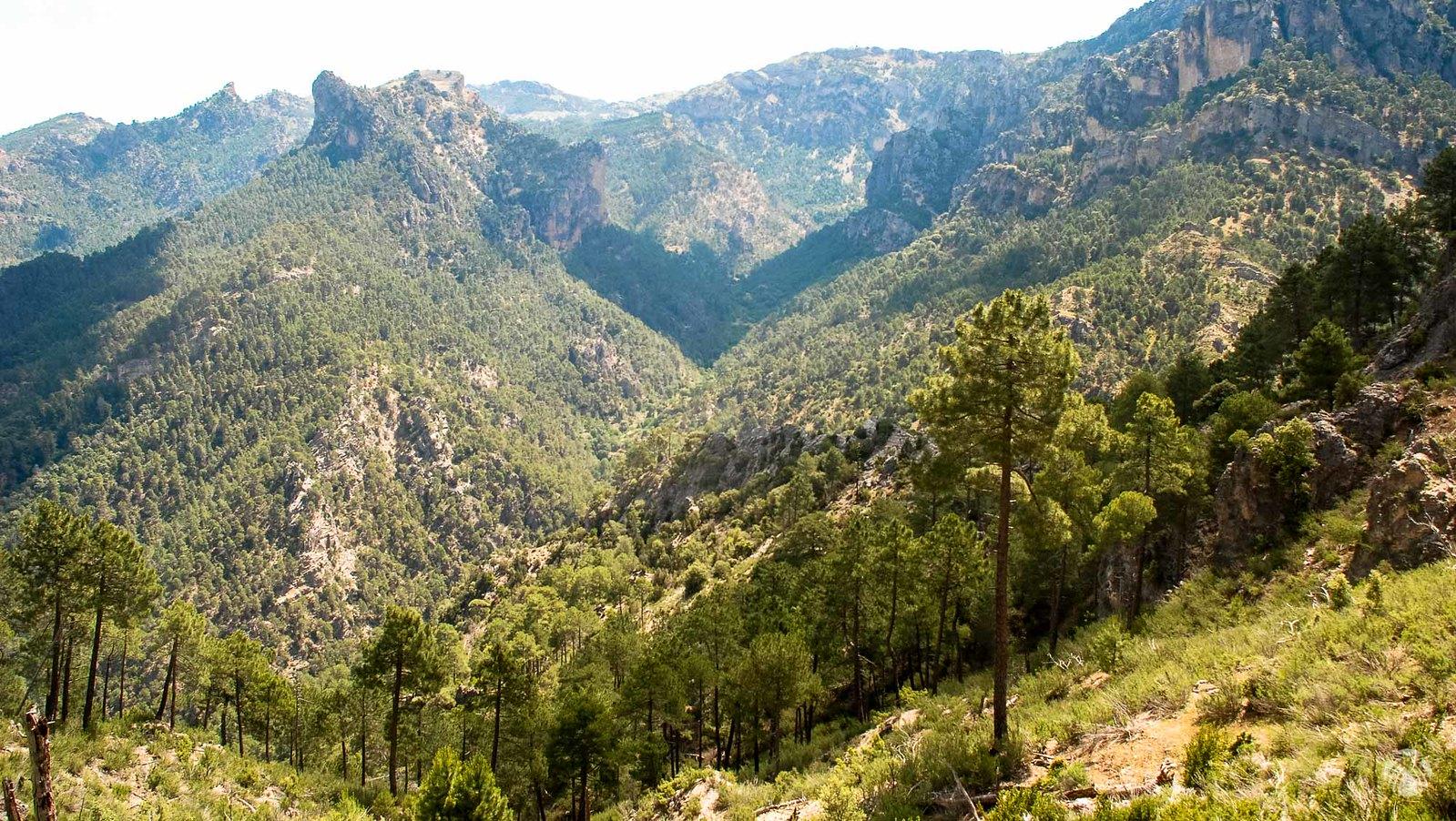 Cuenca alta del río Aguasmulas