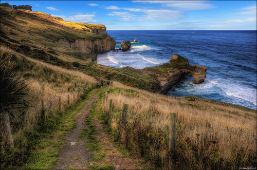 road new sunset sea sky people sun color colour dan beach water grass rock canon fence carved rocks track waves arch sheep path stones secret magic stormy tunnel down images cliffs zealand walkway nz blackhead otago dunedin lantern setting hdr steep dg nugget sheer goodwin 60d pommedan dgimages