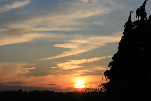 camera sunset sky cloud house tree sunshine canon photography evening photo flickr day estate mark sigma somerset clear amateur beginner yeovil whitmarsh amateurphotography canoneos400ddigital sigmazoomlens canoneosdigital400d sigma18200mmf3563dcos whitmarshphotograpy markwhitmarsh marmarwhit markwhitmarshphotography