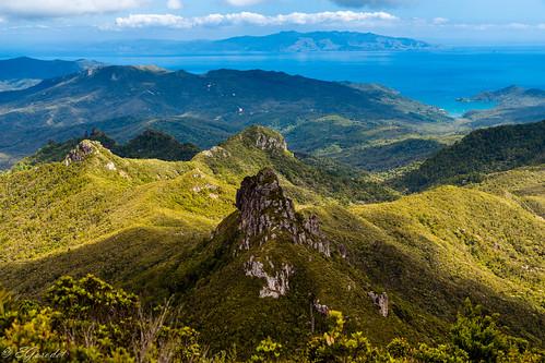 new travel newzealand mountain tourism nature trekking landscape island track great hike auckland zealand valley nz barrier wilderness hobson greatbarrierisland