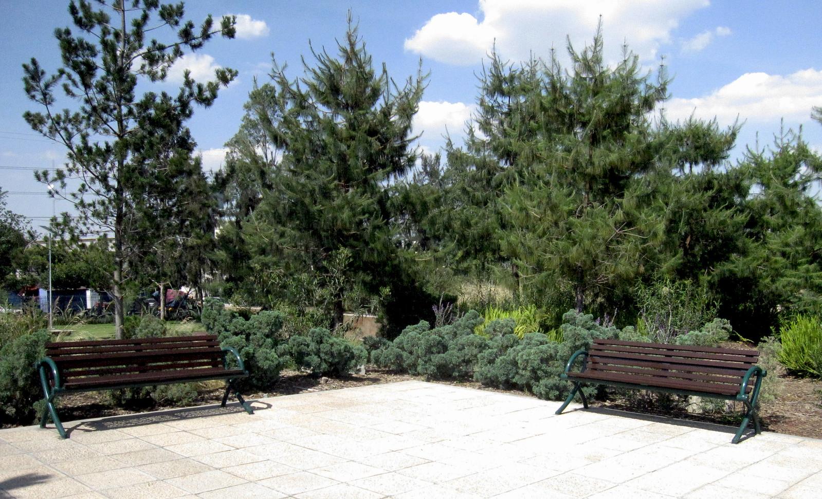 Parque Bicentenario 12