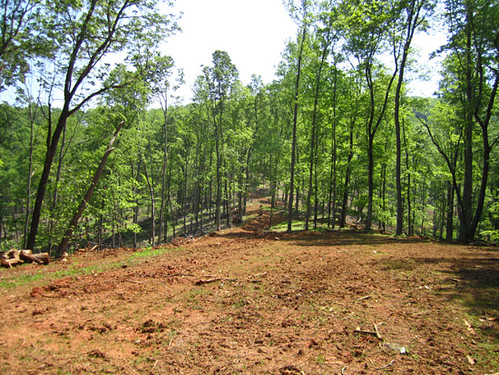 Loading deck site looking toward finished harvest area.