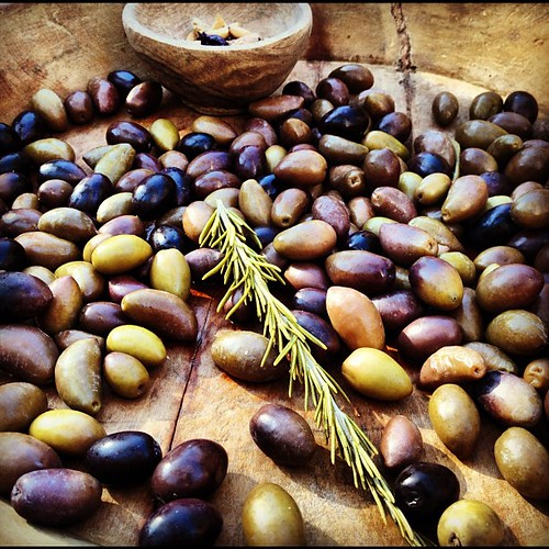 freshly picked olives and rosemary   by sarahwulfeck