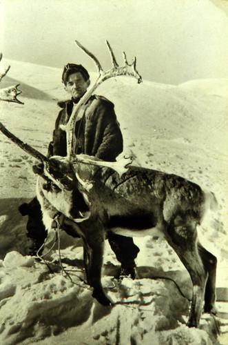 Ukjent bilde av mann med reinsdyr